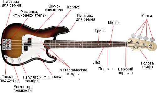 Anatomy of a bass guitar